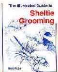 Sheltie Grooming